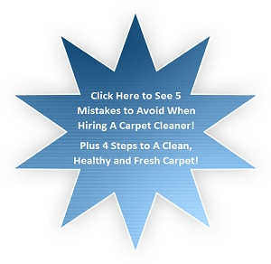 Maryland Carpet Cleaning